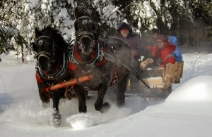 Hohmeyer's partnered with the Paul Smiths College Draft Horse Club to provide sleigh rides this winter.