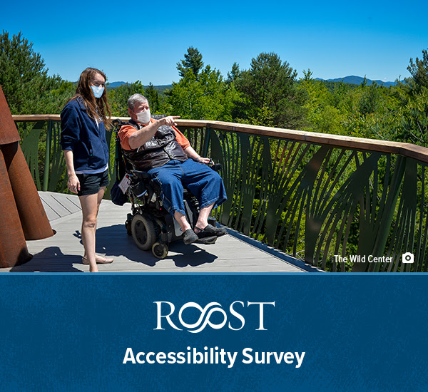 A gentalmen in a wheelchair and a Wild Center staff member enjoy the view from Wild Walk at the Wild Center in Tupper Lake.